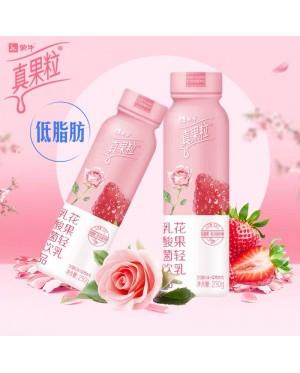 【乳酸菌饮品】蒙牛真果粒花果轻乳低脂肪饮料 /  Yogurt Drink Ready Stock