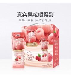 【肖战同款】 高级新款 现货 YOGURT DRINK 蒙牛真果粒白桃树莓 white peach 240G 1 pack